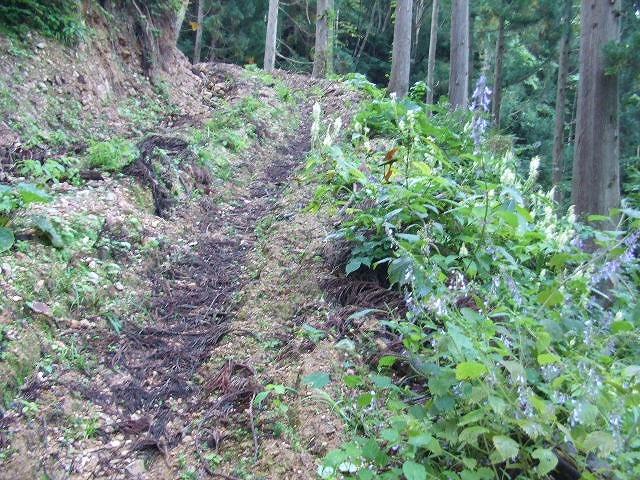 http://inage.raindrop.jp/wbs/chokai/hinoto/01.jpg